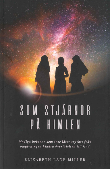 Elizabeth Lane Miller: Som stjärnor på himlen [Bok]