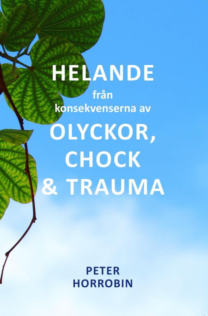 Peter Horrobin: Helande från konsekvenserna av olyckor, chock & trauma [bok]